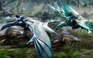 Avatar_Dragons