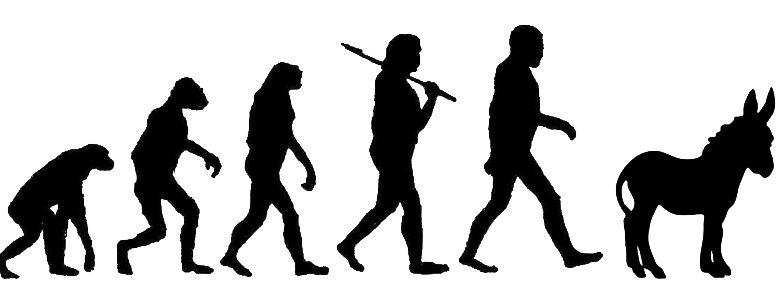 Evolution Unto Asshood